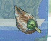 Anas platyrhynchos - the mallard duck original card