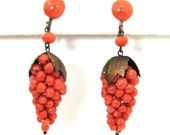 A Beautiful Pair of Edwardian Coral Grape Cluster Earrings- Gold Vermeil - Circa 1910