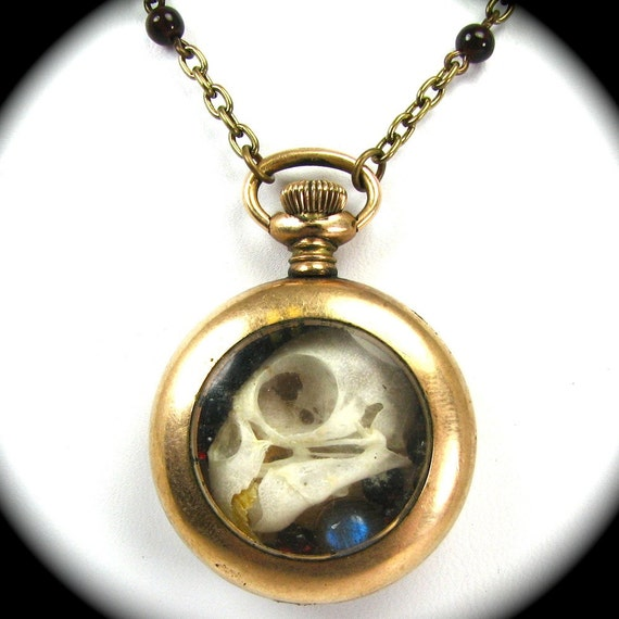 Steampunk Skull Necklace OSSUARY RELIC with Genuine Parrot Skull Garnets Labradorite - One of a Kind Work of Art Only from Nouveau Motley