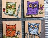 Owl Magnets Set of 4