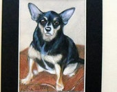 "Custom ACEO Pet Portrait - Chihuahua mix or any breed or pet, original portrait from your photos 3.5"" x 5"", dog art"