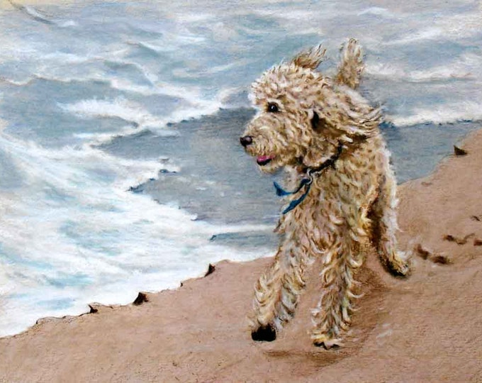 Poodle Drawing, running on Beach, Standard Poodle Custom Portrait
