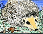 ACEO Cute Hedgehog Acrylic drawing-painting from Exhibited Artist