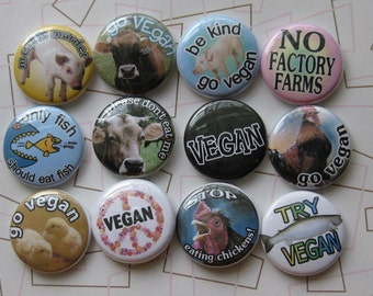 a whole bunch of vegan one inch badges
