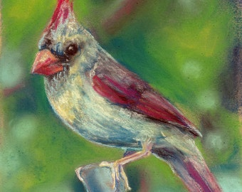 Bird Painting Spring Cardinal Pastel Reproduction Print Artwork Bird Wall Art
