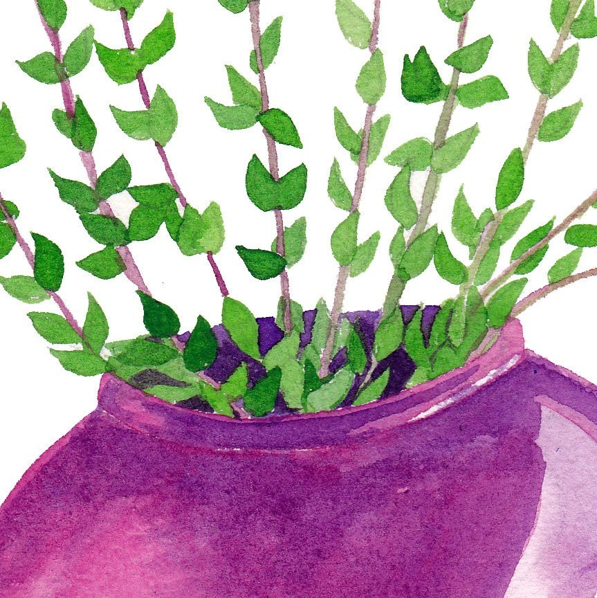 Thyme Original Watercolor Botanical Painting Kitchen Wall Artwork - on sale