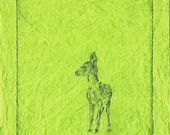 Spring Fawn Etching