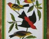 vintage bird playing card