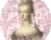 Marie Antoinette Designer Fabric Block Pink Marie 5 x 7