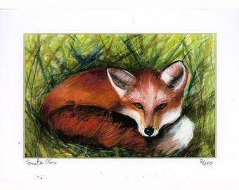 Foxy Lady Fox laying in grass signed and numbered  Print