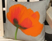 Red Poppy on Beige Background 16 inch Pillow Cover series F