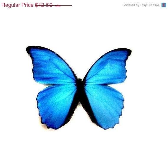ON SALE Beautiful Blue Morpho Butterfly Pin Brooch from Hoolala