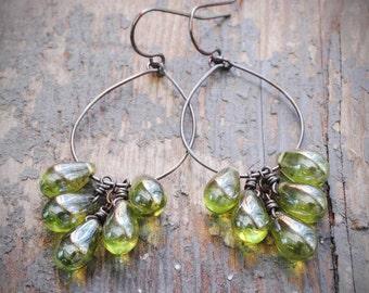 olive cluster hoop earrings. czech glass drops & oxidized sterling silver.