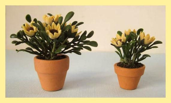 Miniature Dollhouse Pots With Flowering Plants, Pair
