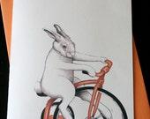 Tricycle Rabbit - For RomyBrett