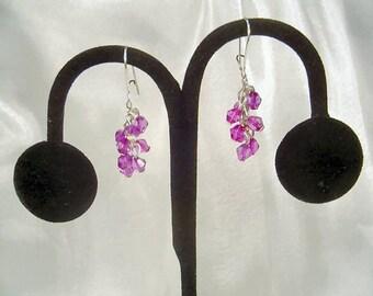 Fuchsia Explosion Earrings by Diana