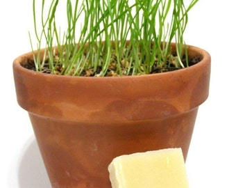 Fresh Grass Soap