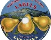 Can & CRATE LABELS on CD vintage images cookbooks fruit prints Victorian labels antique retro ephemera fruit kitchen altered art crafts