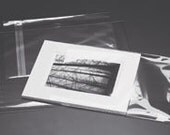 5x7 Clear Display Bags Qty 100