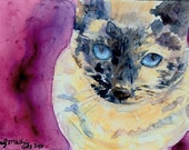 Watercolor Yupo Reproduction Siamese Cat Feline Portrait Print by Andy Mathis Georgia Watercolor Society