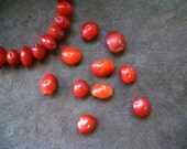 Natural Red Seeds 10pc