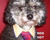 Dickie Doo Dog - Simply Ree-Dickie-Lous