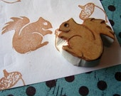 Rubber Stamp-Shaneyney Squirrel