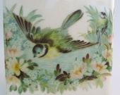 Garden Sparrow Tile Coaster