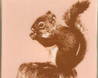 Pink Squirrel Coaster