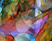 Colorful Abstract Nature Scene - Waterdance - Art Print - 11 x 14