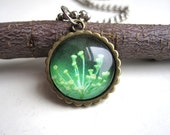yellow green herb pendant photo necklace