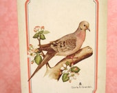 Vintage Playing Cards with Mourning Dove on Flowering Branch
