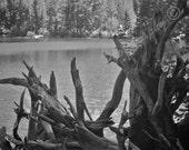 Mountain Lake in the Colorado Rockies (Free Shipping)