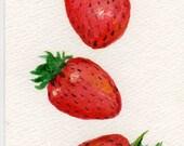Strawberries Watercolor Painting  original ART, 4 x 6, Fruit Series