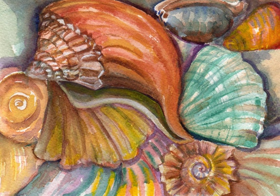 Original Shells Watercolor Seashells Painting