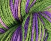 Provence Handpainted Worsted Wool Yarn - 4 oz (113 grams)