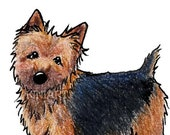 NORWICH Terrier Dog Art PRINT Signed Reproduction