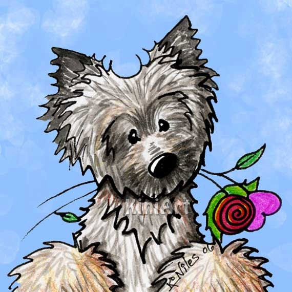 Matted Art Print Ash Cairn Terrier Dog ACEO