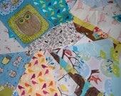Scrap Bundle, Bird and Owl Themed Fabric Grab Bag Pack.  A Beautiful Selection of Bird Prints.