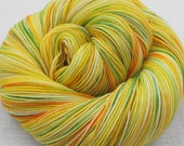 Superwash Merino and Nylon Fingering Sock Yarn - DAFFODILS -