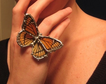 Viceroy Butterfly Ring - Real Butterfly Jewelry - Made to Order - Statement Ring