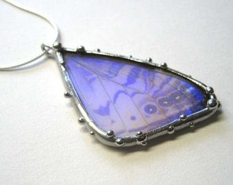 Pearl Morpho Butterfly Necklace - Real Butterfly Jewelry