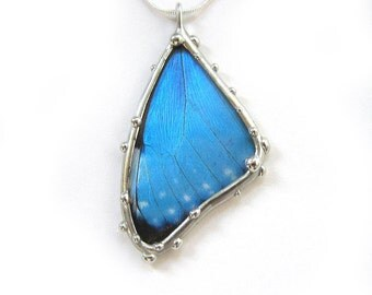 Butterfly Necklace - Smallest Blue Morpho Necklace - Real Insect Jewelry in Glass, Boho Style, Great Gift for a Nature Lover