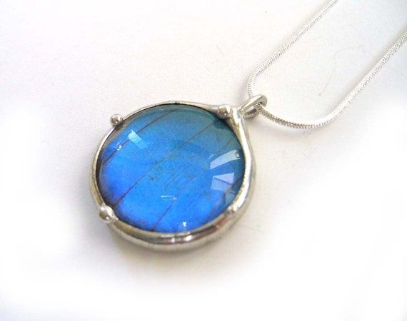 Nicole's Real Blue Morpho Butterfly Circle Necklace