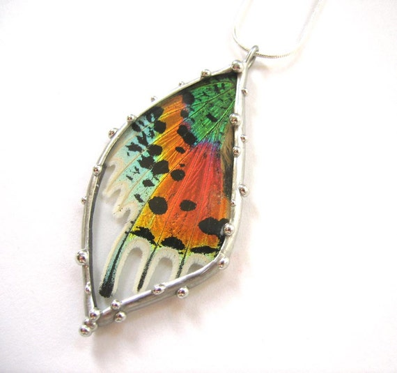 Madagascan Sunset Moth Necklace - Real Butterfly Jewelry - Colorful Moth Wing in Glass Pendant