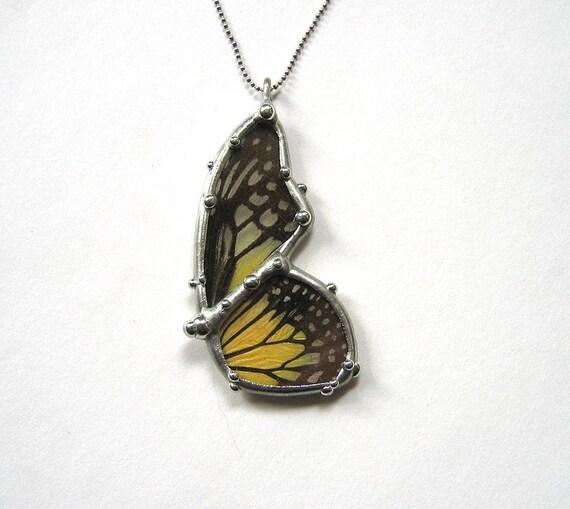 Butterfly in Flight - Real Butterfly Jewelry