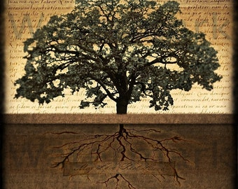 Tree Of Life. Tree and Roots. Clouds. Original Digital Photograph. Wall Art. Wall Decor. Giclee Print. MAY LOVE REST HeRE by Mikel Robinson