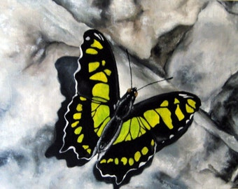 A Brief Stop - Original Oil Butterfly Painting