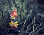 This Tree... Makes me happy... - Dwarf Elf Gnome Toy Photography 8x10 trees fall forest cute decor print wall art by aptrick