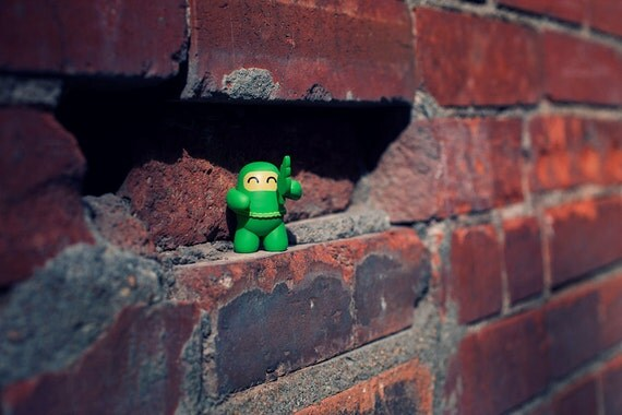 the right ninja... the wrong ninja outfit... 8x10, fine art, toy photography, ninja, toy, green, brick wall, city, urban, throwing star